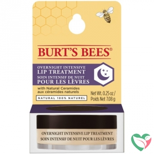 Burts Bees Lip treatment overnight intensive