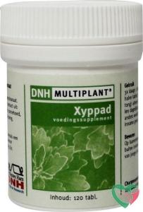 DNH Xyppad multiplant