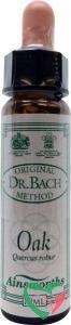 Ainsworths Oak Bach