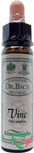 Ainsworths Vine Bach