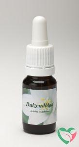Star Remedies Duizendblad wit