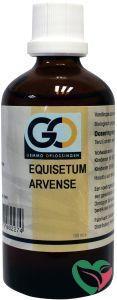 GO Equisetum arvense bio