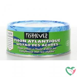 Fish 4 Ever Tonijnmoot in olijfolie