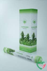 Green Tree Wierook cannabis