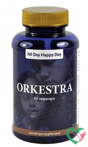 Alldayhappyday Orkestra
