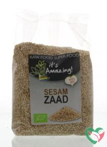 It's Amazing Sesamzaad bio